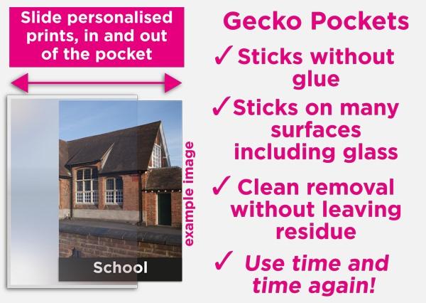 Gecko Pocket